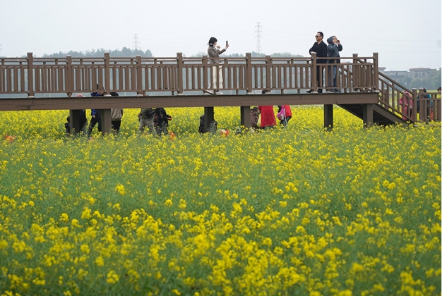 南昌:打造都市休闲农业 助推乡村产业振兴