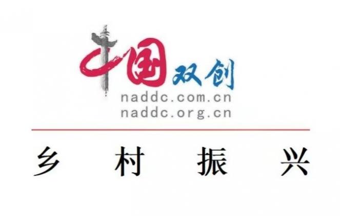 中国双创乡村振兴