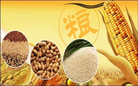 农业农村部:节粮减损因重要需重视 因紧迫需解决 因复杂需合作